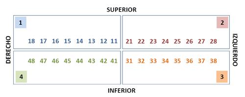 353-Los-dientes-II-G